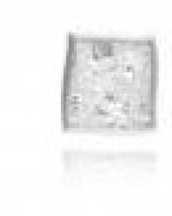Gill Galloway fantasiehanger 4-kant met geoxydeerd + wit fijnzilver 999/000 - 210207