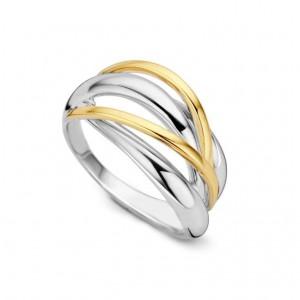 eNGi collections zilveren ring met 14 krt geelgoud, 2 banen - 209030